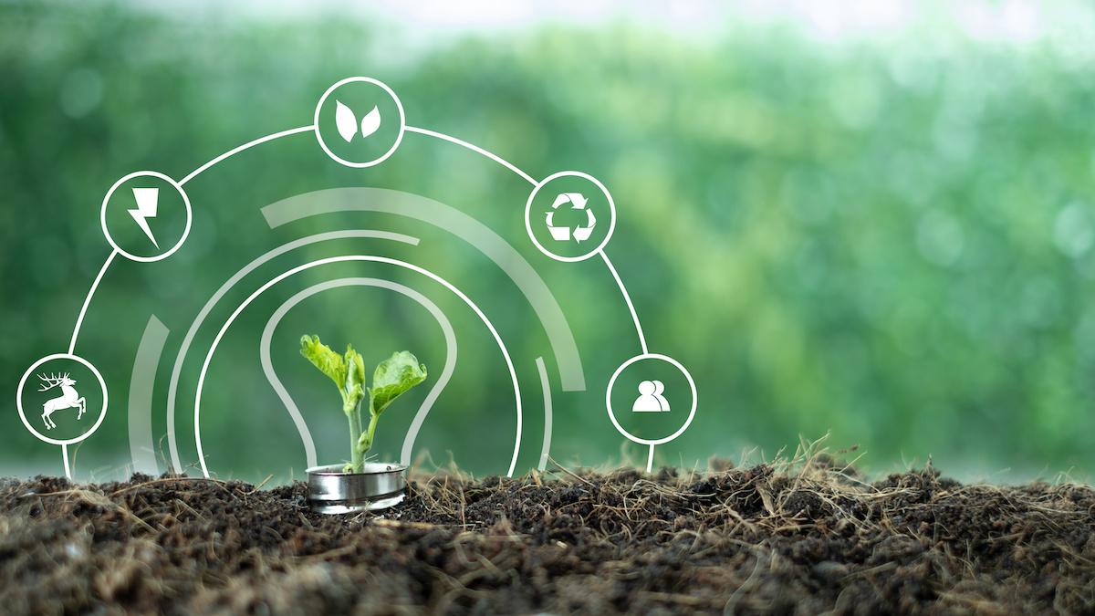 Comment fonctionne l'énergie verte et quels sont les coûts de la facture ?